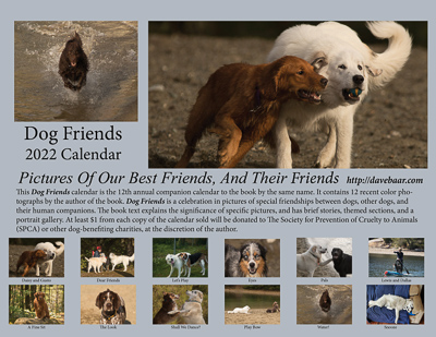 Dog Friends Calendar -click for details