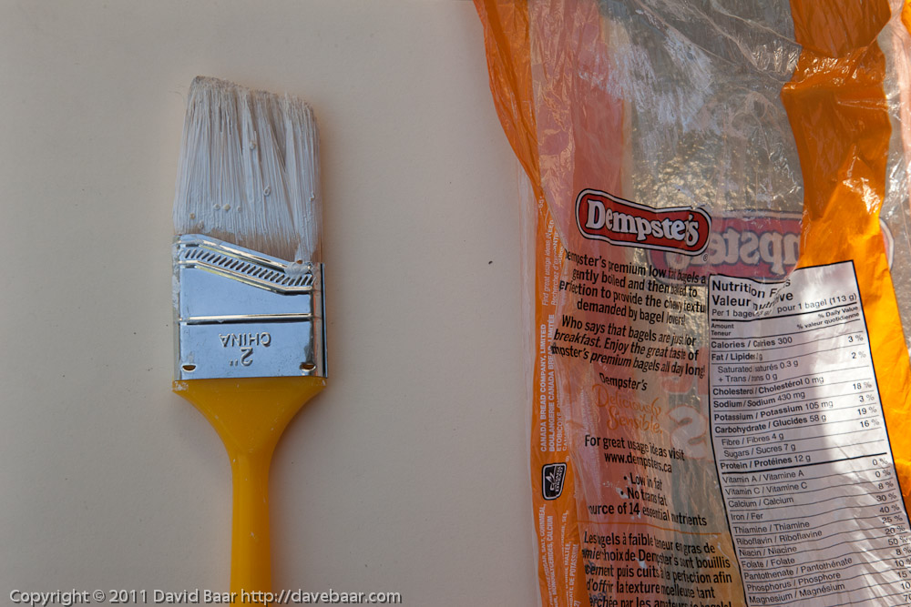 Used paintbrush, still wet from use.